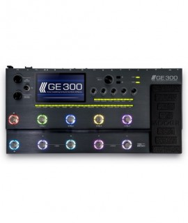 GE300